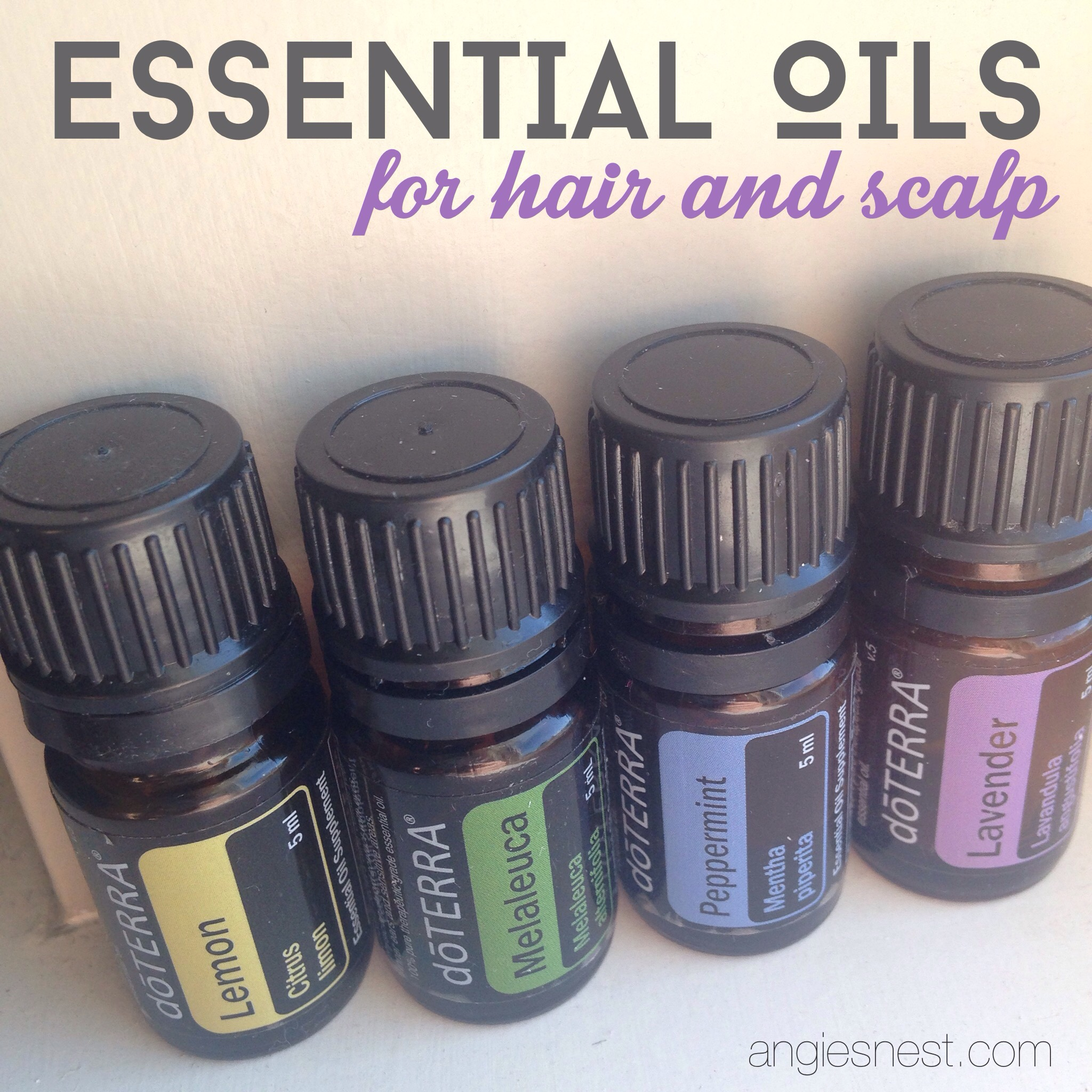 essential oils for scalp and dandrufd