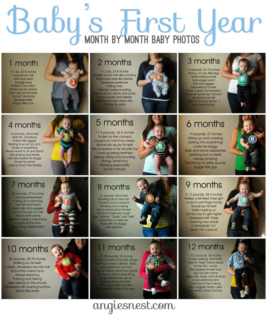Baby's First Year Month by Month photos